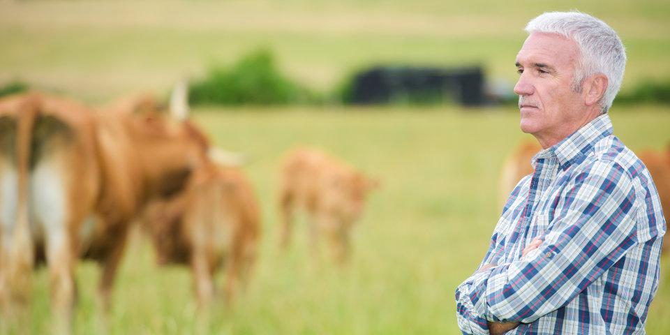 Farm-Business-Succession